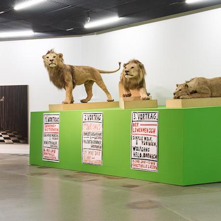 Löwen Safari